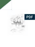 TrueVerb.pdf