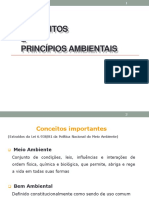 Conceitos e Principios Ambientais