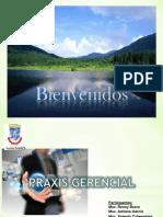 LA PRAXIS GERENCIAL HERRAMIENTAS ADMON AMBIENTAL.ppt
