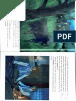 h28.pdf