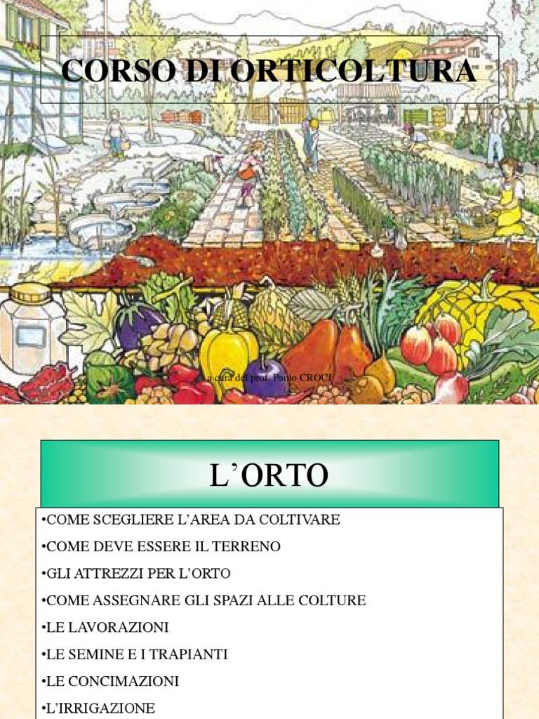 Calendario Trapianti Orto Pdf.19 Padenghe Verde Corso Aprire E Gestire Orto Pdf