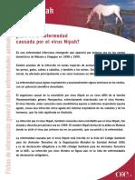 NIPAH-ES.pdf