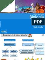 Clase 9 Ciclo celular 2015.ppt
