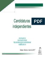 Candidaturas Independientes, Xalapa 2017