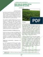 Criterios Para El Manejo de La Fertilización de La Soya