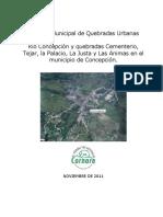 ANEXO 2 Informe Municipal de Quebradas Urbanas Concepcion