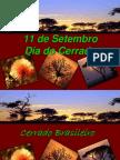 Dia Do Cerrado - Centenário.