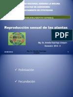 Caracte Plantas Autogamas y Alogamas
