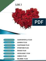 bungapptx-131026141009-phpapp02