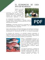 Actividades Economicas de Cada Departamento de Nicaragua