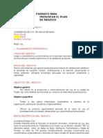 formato_plan_de_negocio-1.doc