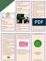 Leaflet Vulva Hygiene Pada Ibu Nifas