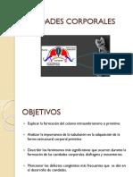 Desarrollo de Cavidades Corporales