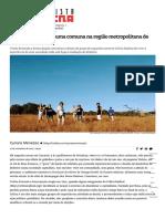 Os novos cearenses_ uma comuna na região metropolitana de Fortaleza -