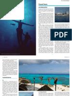 Buceo cozumel .pdf