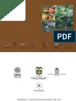 theobroma CACAO MARACO.pdf