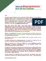 Bioprogramacion curso total.doc