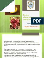 316114001-Frutos-Climatericos-y-No-Climatericos.pptx