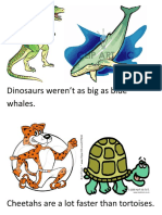 G Room Decorations COMPARATIVE Flashcards