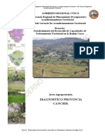 DIAGNOSTICO CANCHIS.pdf