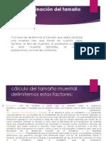 Expo Estadistica Inf.