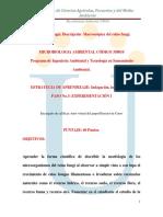 358010 288 Guia Paso No.3 Experimentacion i PDF