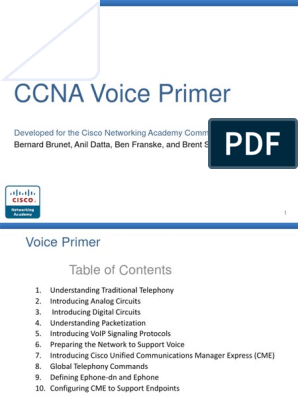 Voice Primer Slides pptx | Ip Address | Network Packet