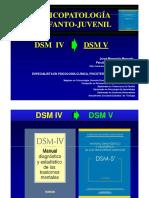 02.  DSM IV AL V
