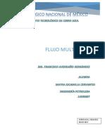 FLUJO-MULTIFASICO