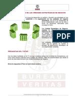 228068344-SOL-TI-Caracteristicas-Unidades-Estrategicas-Negocio.pdf