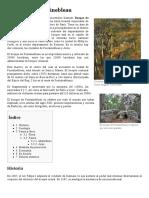 Bosque de Fontainebleau