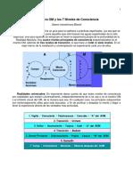 OMy7NivelesdeConsciencia.pdf