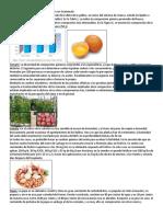 10 Alimentos Que Son Más Consumidos en Guatemala
