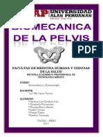 monografia-de-pelvis-o.docx
