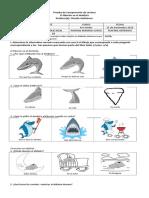 Prueba C. Lectora El Tiburón Va Al Dentista PK