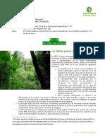 rio + 20.pdf