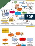 Mapa Mental - Derecho grupo 28 Entrega 1 semana 3.pdf