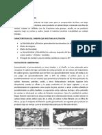 Marco Teorico Flotacion Del Carbon