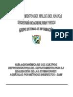 Guía_Agronómica_Cultivos_Representativos_del_Departamento_del_Valle_del_Cauca.pdf