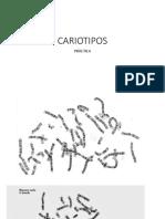 CARIOTIPOS Y EJERCICIO A CASA.pptx