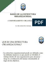BASES DE LA ESTRUCTURA ORGANIZACIONAL (1).pdf