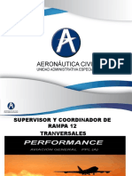 Performance Aviones