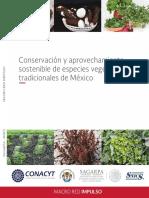 Conservacion y Aprovechamiento Sostenible de Especies Vegetales Tradicionales de MeXico