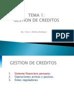 Tema 1 Gestion de Creditos