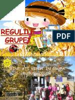 REGULILE GRUPEI