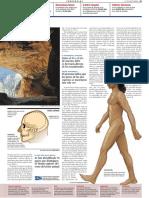 Paleoantropologia-4