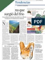 Paleoantropologia-5