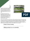 Fodder for Dairy Farming