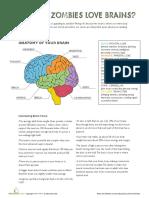 Zombie brains.pdf