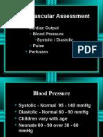 Cardiovascular+Assessment